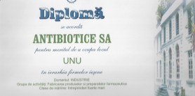 Diploma de excelenta Camera de Comert 2008 -2