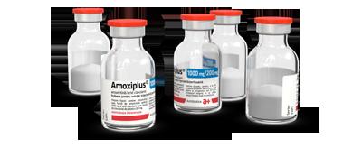 amoxiplus_1000mg